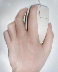how to hold a pet mouse